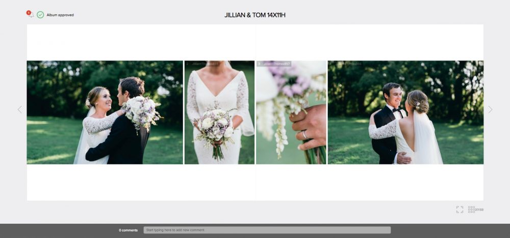 Professional Wedding Album Design - Online Proofing